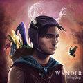 WVNDER image