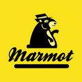 Marmot Music image
