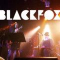 BLACKFOX image