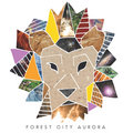 Forest City Aurora image