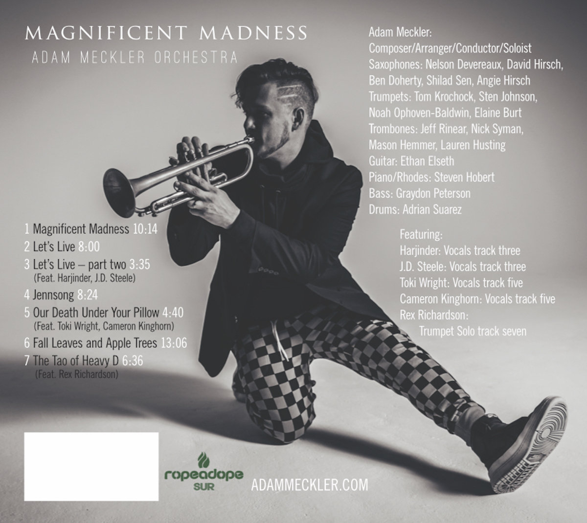 Magnificent Madness | The Adam Meckler Orchestra