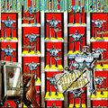 Elektro Robotik Dub Orkestra image