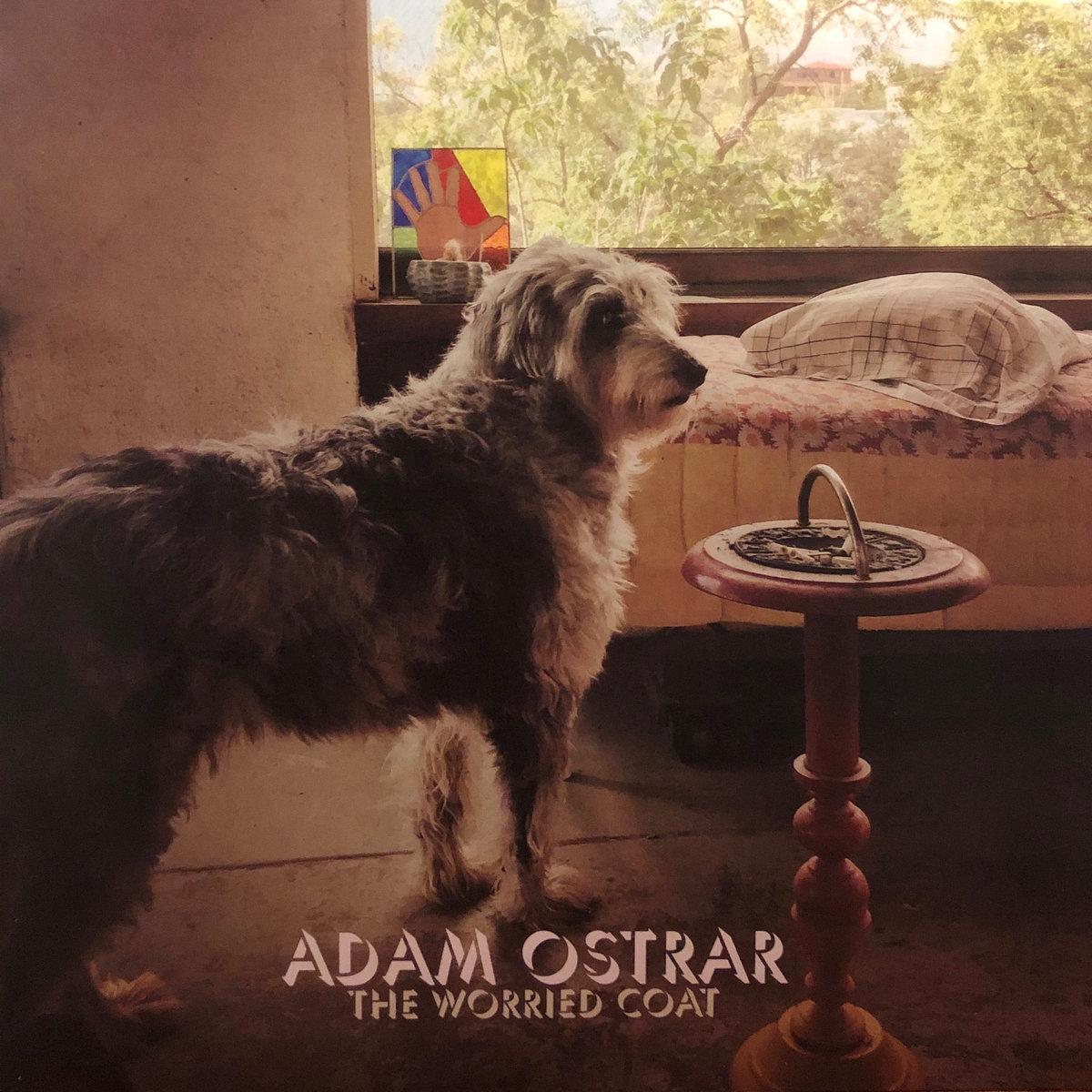 Talking Out Loud | Adam Ostrar