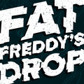 Fat Freddy's Drop image