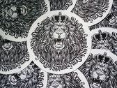 Limited Edition / B&W Lion Slipmats (Pair) photo