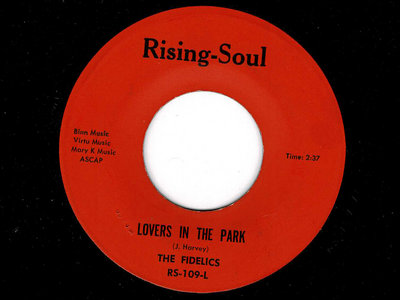 LOVERS IN THE PARK - THE FIDELICS - NM main photo