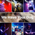 We Have Your Dog image