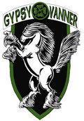 GYPSY VANNER image