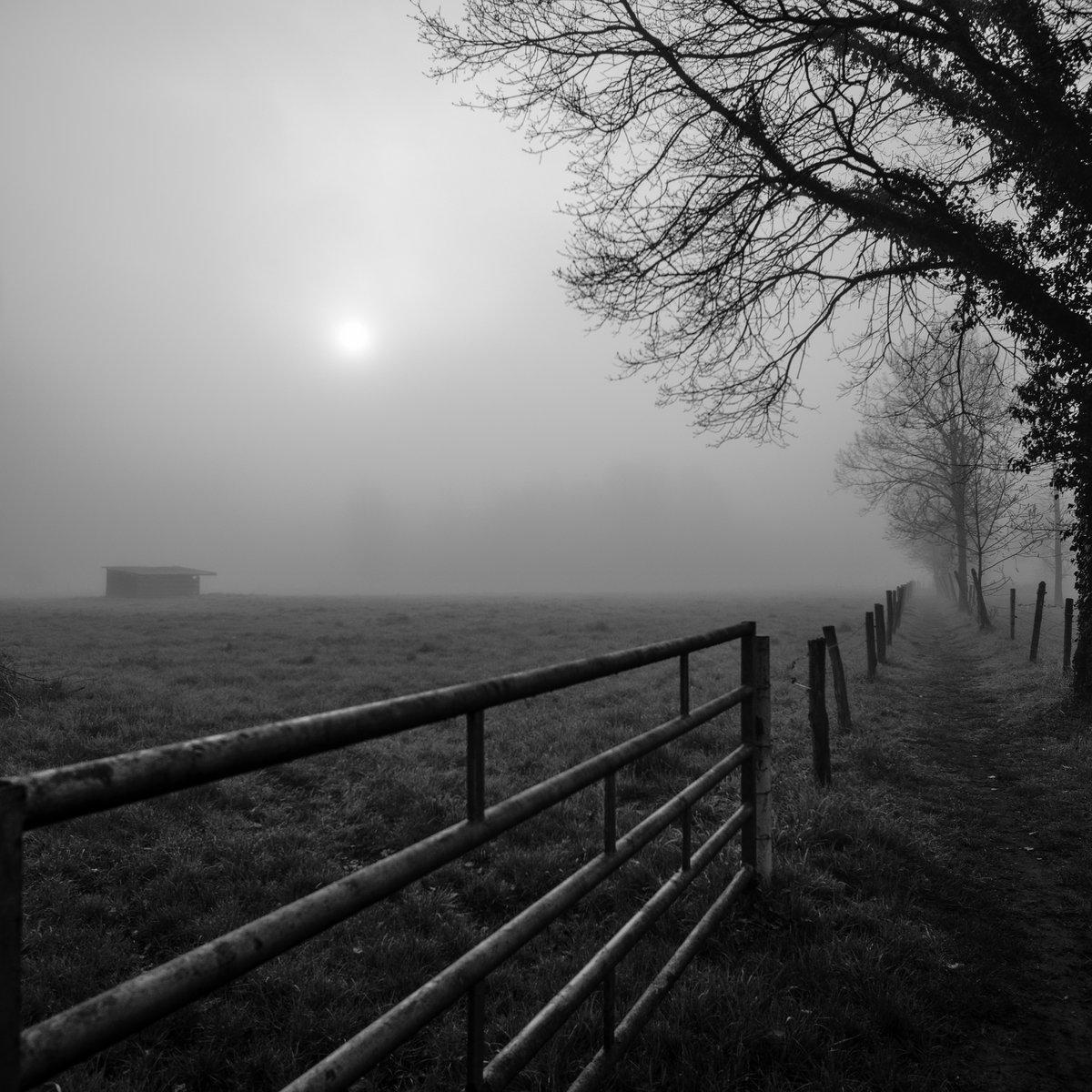 WED059/BNM023/NEV001 - The Hageland [Ambient/Soundscapes