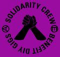 Solidarity Crew & Benefit Diy Gigs image