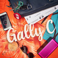 GallyC image