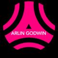 Arlin Godwin image