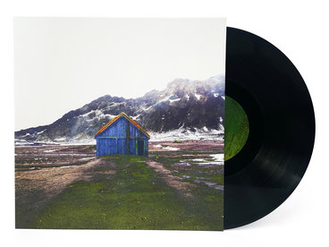 "Limited 180gm 12"" Vinyl main photo"