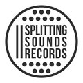 Splitting Sounds Records image
