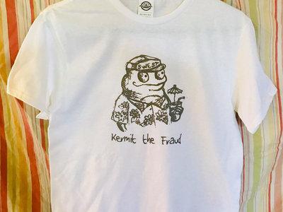 Fraudulent Frog main photo