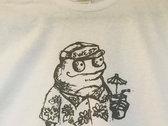 Fraudulent Frog photo