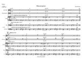 Mareike Wiening   Misconception   Score & Parts (PDF) photo