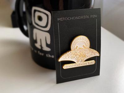 Mitochondrial pin main photo