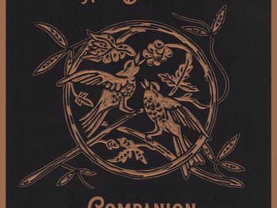 "Limited Edition ""Companion"" bundle--- T-shirt, CD, ""All Damn Day"" Vinyl + stickers main photo"