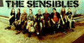 The Sensibles image