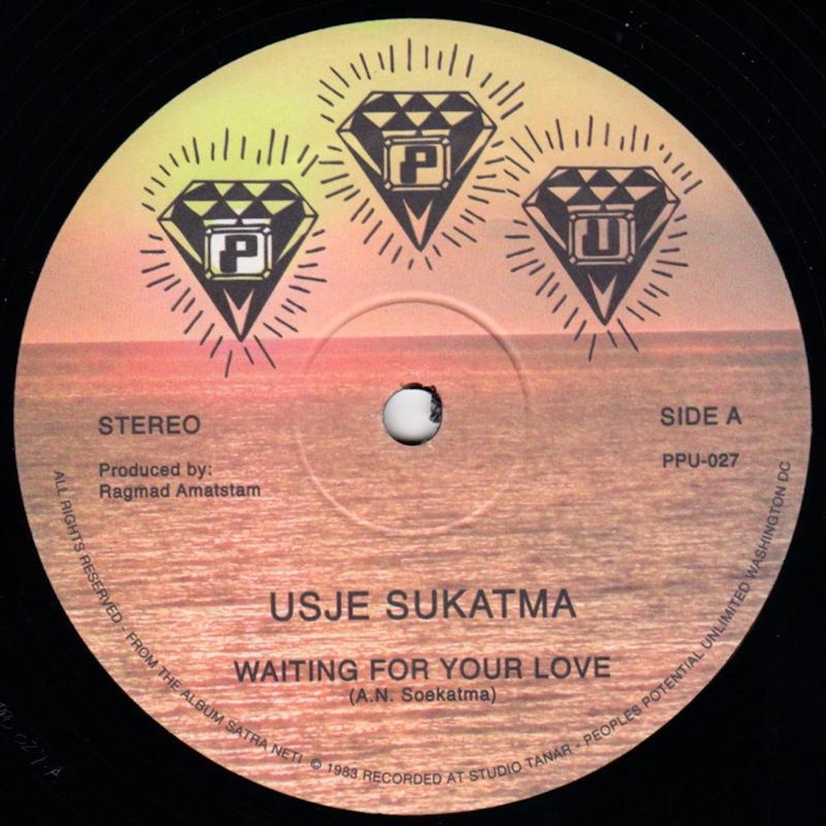 use susatma waiting for your love 12 vinyl ppu ppu bandcamp