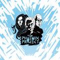 The Phoenix Project image