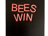 Limited Varied Edition 'Bees Win Lithograph Print photo