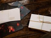 Still Life Postcard Bundles! <3 photo