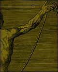 Rope Sect image