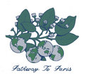 Pathway to Paris image
