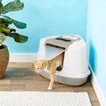 Best Cat Litter Boxes image