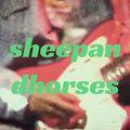 羊與馬群 Sheep & Horses image