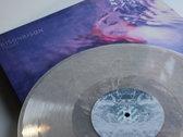 BisonBison - Hover LP photo
