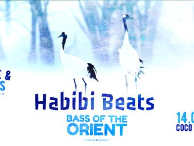 Habibi Beats - Vienna's Oriental Clubnight - Live & DJ's main photo