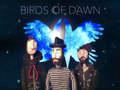Birds Of Dawn image