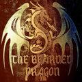 The Bearded Dragon image
