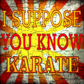 I Suppose You Know Karate image