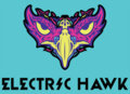 Electric Hawk Records image