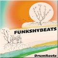 FunkshyBeats image