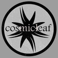 Cosmicleaf Records image