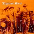 Keith Beck's Zigman Bird image