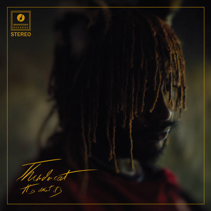 """Thundercat, """"It Is What It Is""""   Bandcamp Daily"""