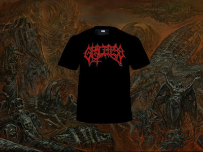 Graceless - logo shirt main photo