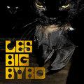 Les Big Byrd image