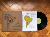 "A Guide to the Birdsongs of South America 12"" Eco-friendly vinyl repress photo"