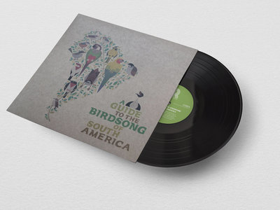 "A Guide to the Birdsongs of South America 12"" Eco-friendly vinyl repress main photo"