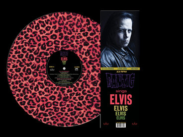 "Limited Edition 12"" in Clear Plastic Cover Leopard Print Vinyl main photo"