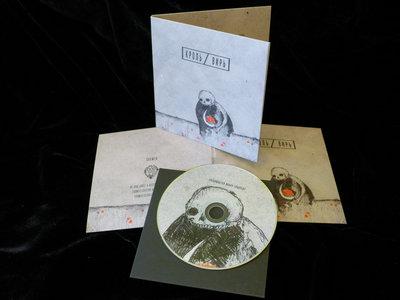 split w/Krol (2020) CD main photo