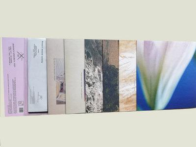 "Scissor and Thread 8 x Vinyl 12"" pack main photo"