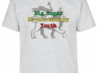 KIDS Revolutionary Youth gray tshirt main photo